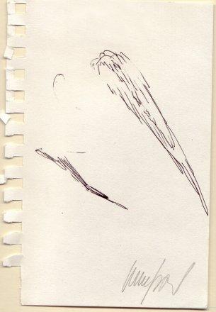 Křídla